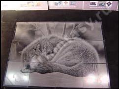 Гравировка на керамической плитке цены на памятники спб ш